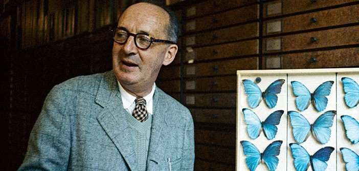 An Animated Look at Novelist Vladimir Nabokov's Passion for Butterfly Collecting